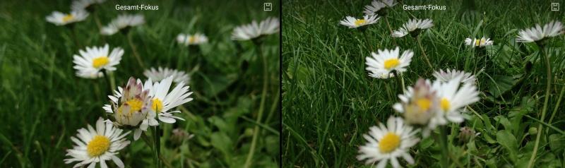 Huawei P9 Lite Gesamtfokus