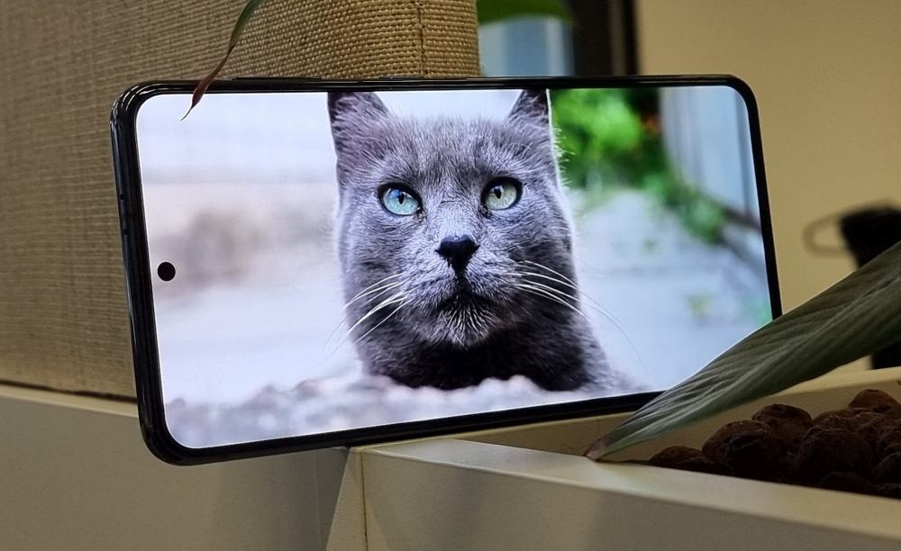 Galaxy S21 Display Youtube Cat Content