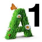 A1 Redaktion